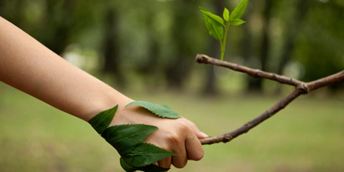 Mio Mondo il mondo lo salvo io! Il progetto di Sangalli per gli Ambasciatori dell'Ambiente