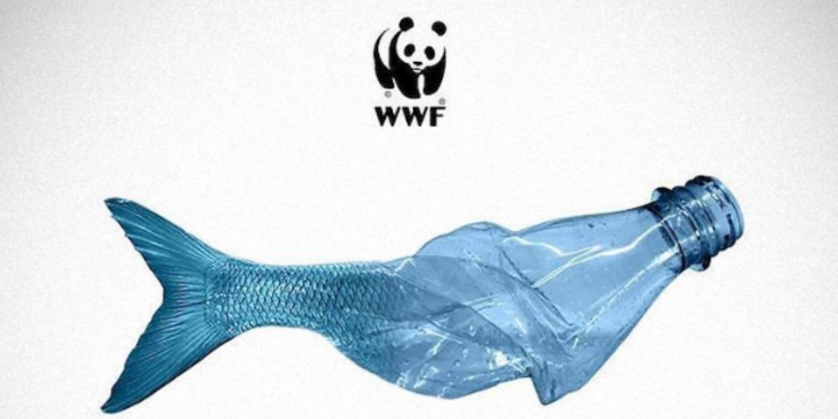 2021: stop alla plastica monouso - Sangalli Impresa