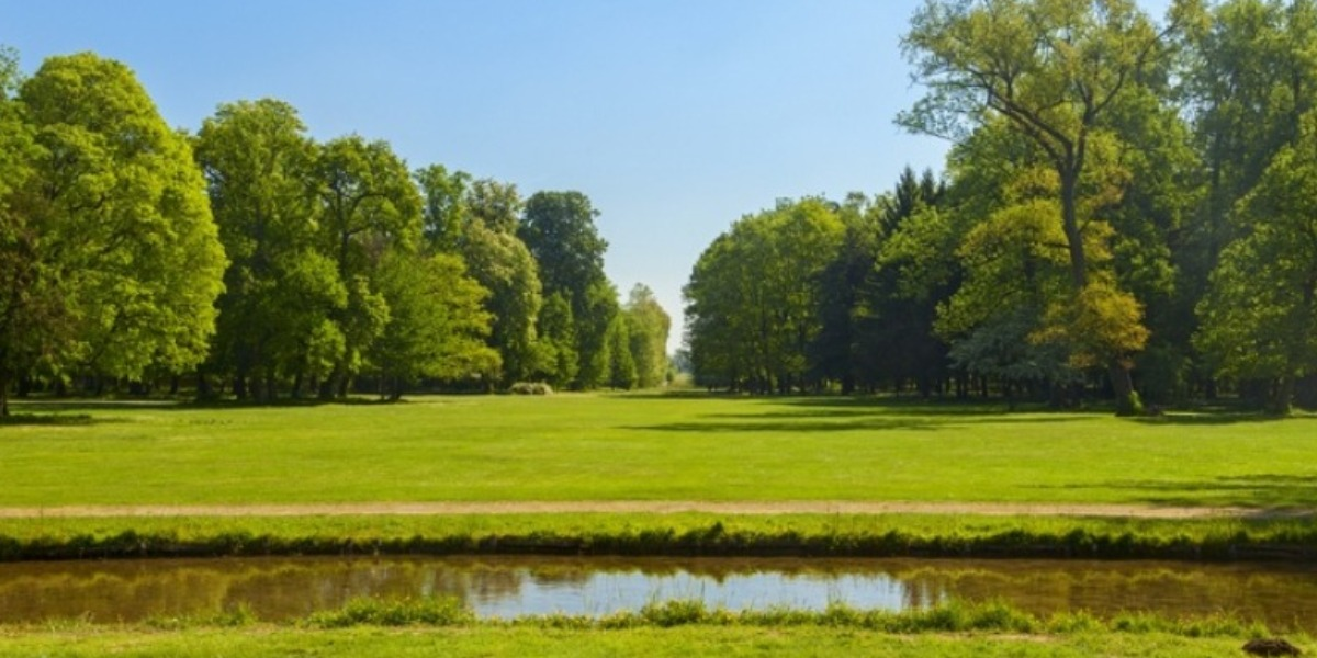 Igiene Urbana a Monza - Sangalli Impresa